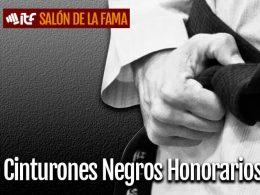 banner-salon-cinturones-negros-honorarios