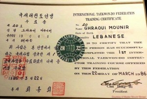 Example of 1st IIC Training Course Cert