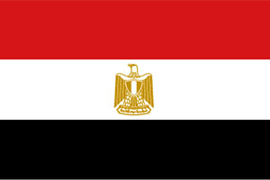 Flag-United-Arab-Republic-of-Egypt-History-Pioneers
